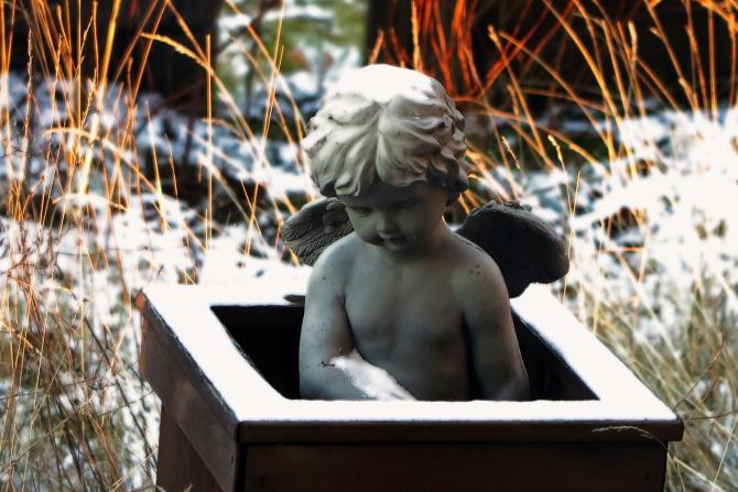 backyard-angel-2