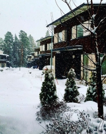 snowday-10
