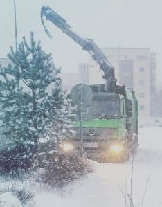 snowday-3