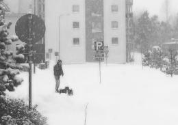 snowday-7