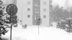 snowday-8