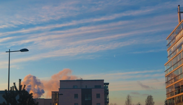 winter-morning_5