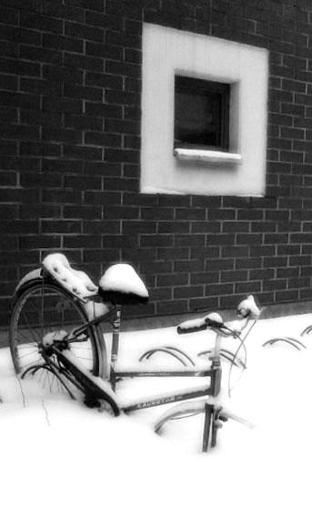 winter-winter-2