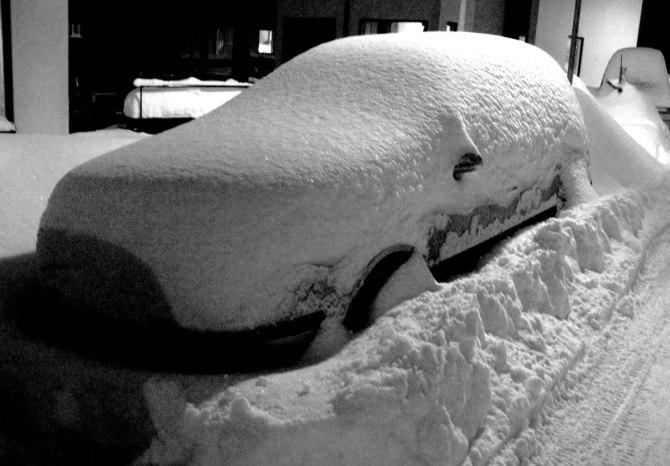 winter-winter-3