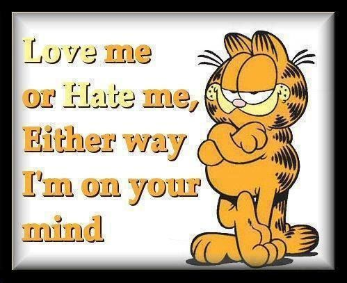 Garfield quote 1