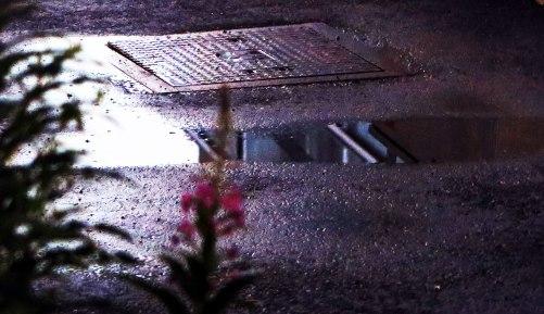 puddle-3