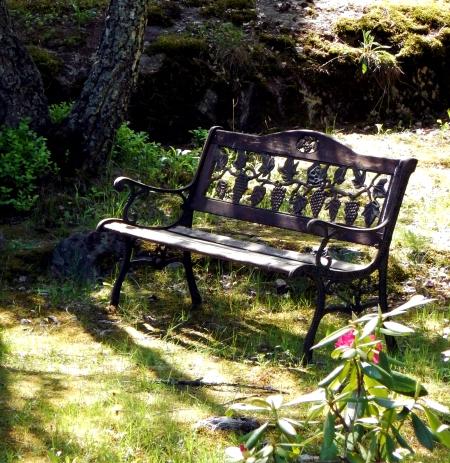 seat-sunday-2