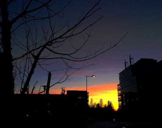 simply-sunset-1