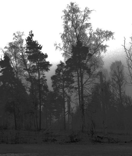 mist-2