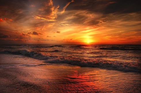 salt_life_writer-beach-sunrise-The Writer Next Door-Vashti Q-Haiku_Friday-Poetry